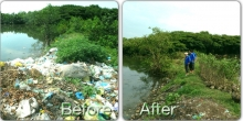 Before and after waste collection in abandoned shrimp ponds6