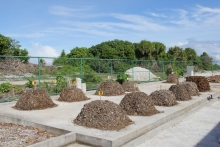Compost piles in Faresmathoda Waste Management Centre