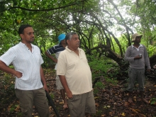 Assessing the diversity of mangroves in Pottuvil, Kudakali, Shastravel and Ulla lagoons.