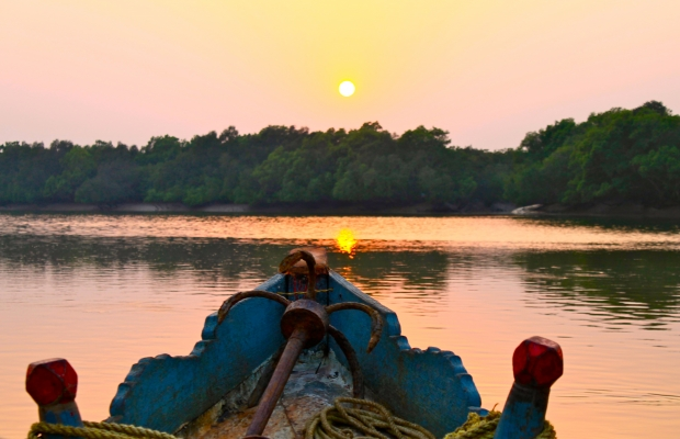 Sunset over Bhitarkanika mangrove forest Orissa Feb 2012 Nisha DSouza