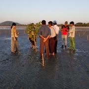 Mr U Win Maung and his team visit the coastal protection zone