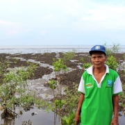 Samsuri and mangrove saplings planted as part of the MFF Small Grant Facility (SGF) project