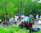 S4S and community group clean and restore the RAMSAR mangrove site with hotel staff