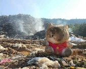 A charred toy sits in front of the 'golden mountain'