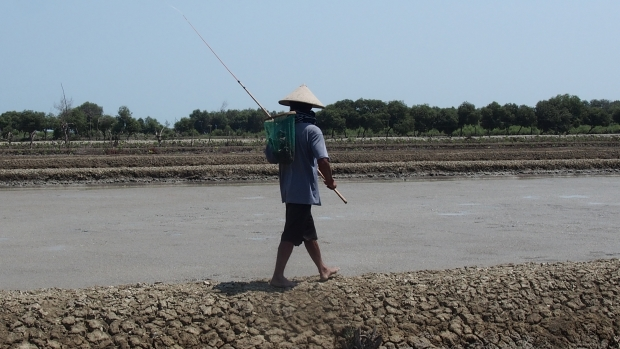 Looking for additional income - fisherman in Demak