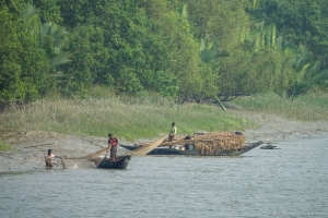 Fishing in the Sundarbans NWHS requires a license.