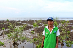 samsuri with mangrove saplings