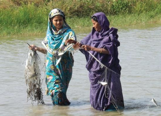 Nabadiganta demonstrated that women doing aquaculture business is possible